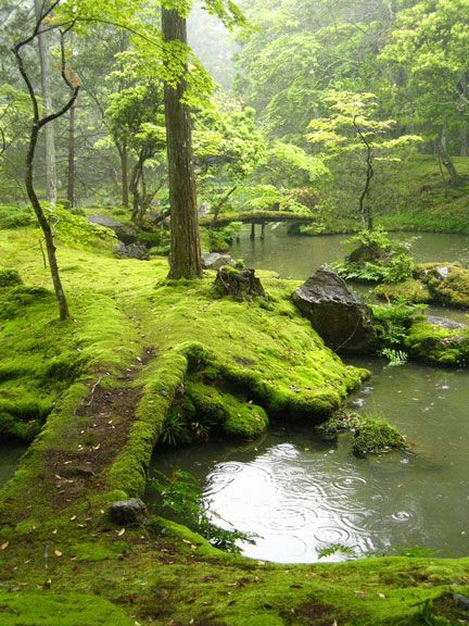 Moss covered bridge is so charming, would make any garden seem ancient. Love it!