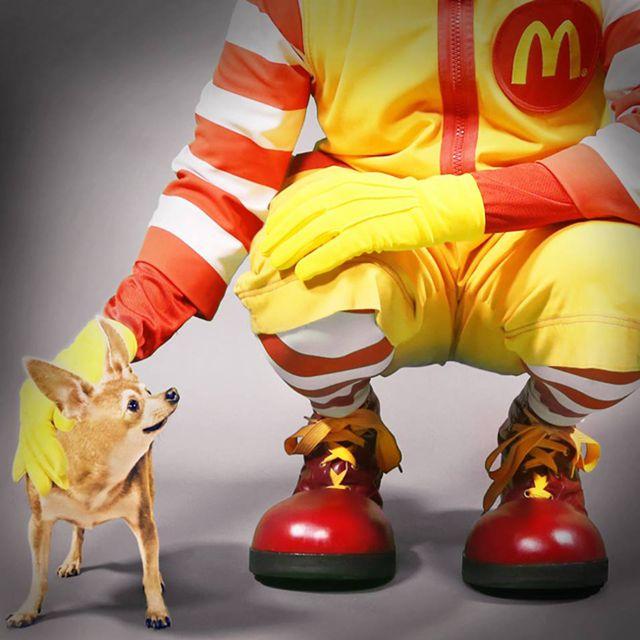 A guerra entre Taco Bell e McDonald's! - http://marketinggoogle.com.br/2014/04/02/a-guerra-entre-taco-bell-e-mcdonalds/