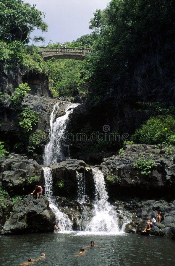 Swimming At A Waterfall Swimmers Oheo Gulch 7 Pools Haleakala Np Maui Sponsored Swimmers Oheo Swimming Waterfall Waterfall Photo Stock Photos