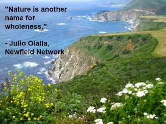 Where is your wholeness in nature felt?