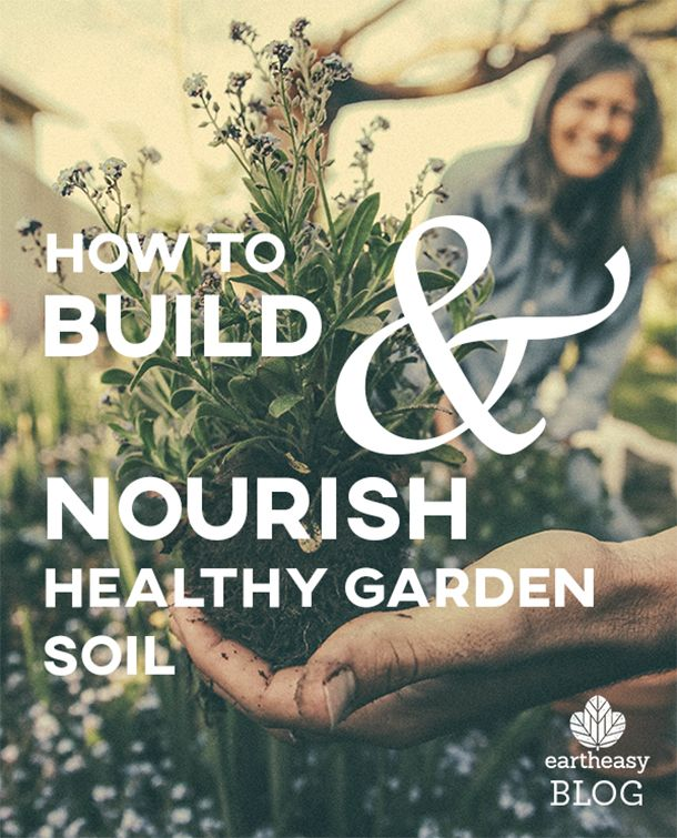 The most fundamental element of any garden plays a vital role in your success.
