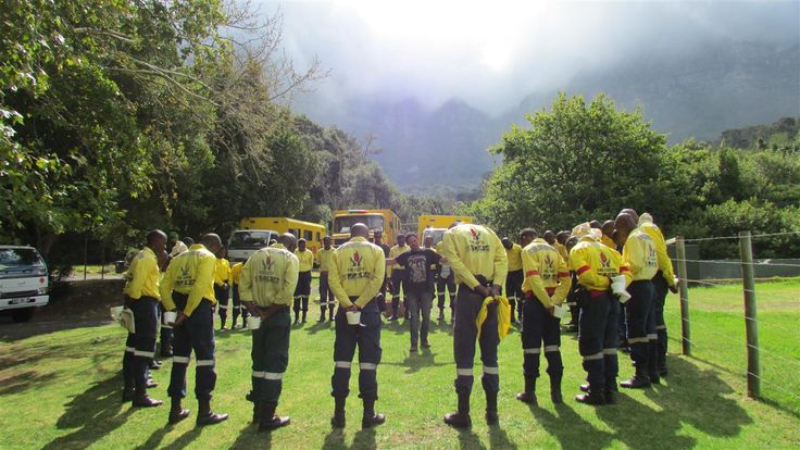 Cape Town Spirit Fights Back the Fire // Volunteer Wildfire Services Overwhelmed by Donations