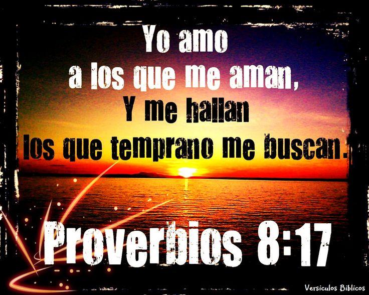 proverbios biblicos   Versículos Biblicos: Proverbios 8:17