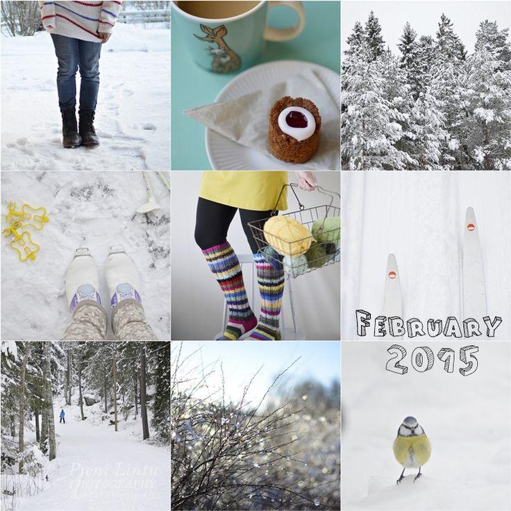 February 2015 in Finland