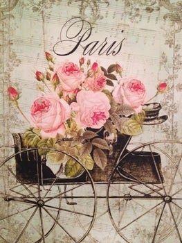 @PinFantasy - Paris vintage card - ✯ http://www.pinterest.com/PinFantasy/viajes-parisoh-la-la/