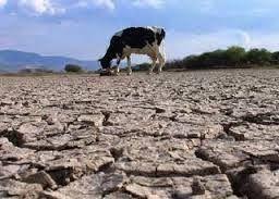 TEMAS  AGROPECUARIOS: Factores contaminantes del medio ambiente.  (Alex ...