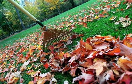 A fall must-do list for a beautiful lawn in the spring.