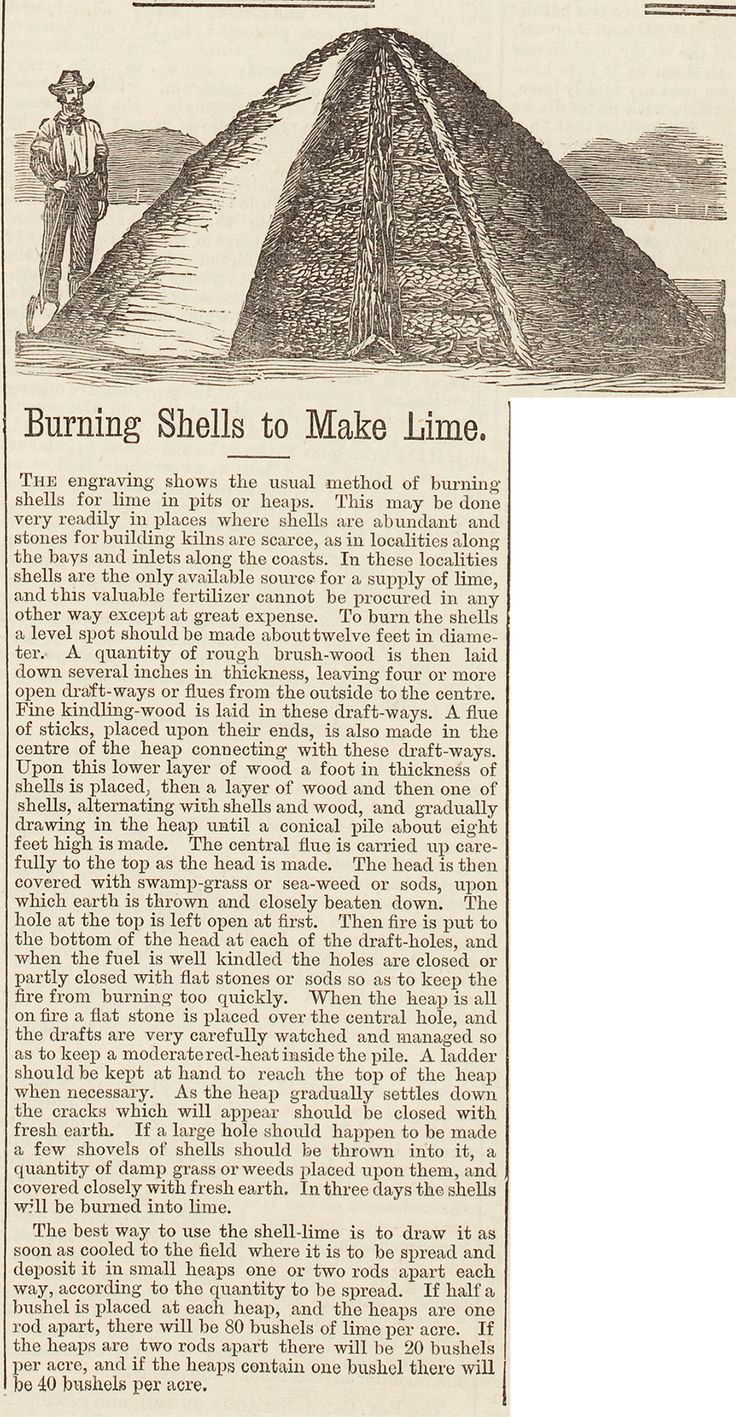 Burning Shells to Make Lime, 1874