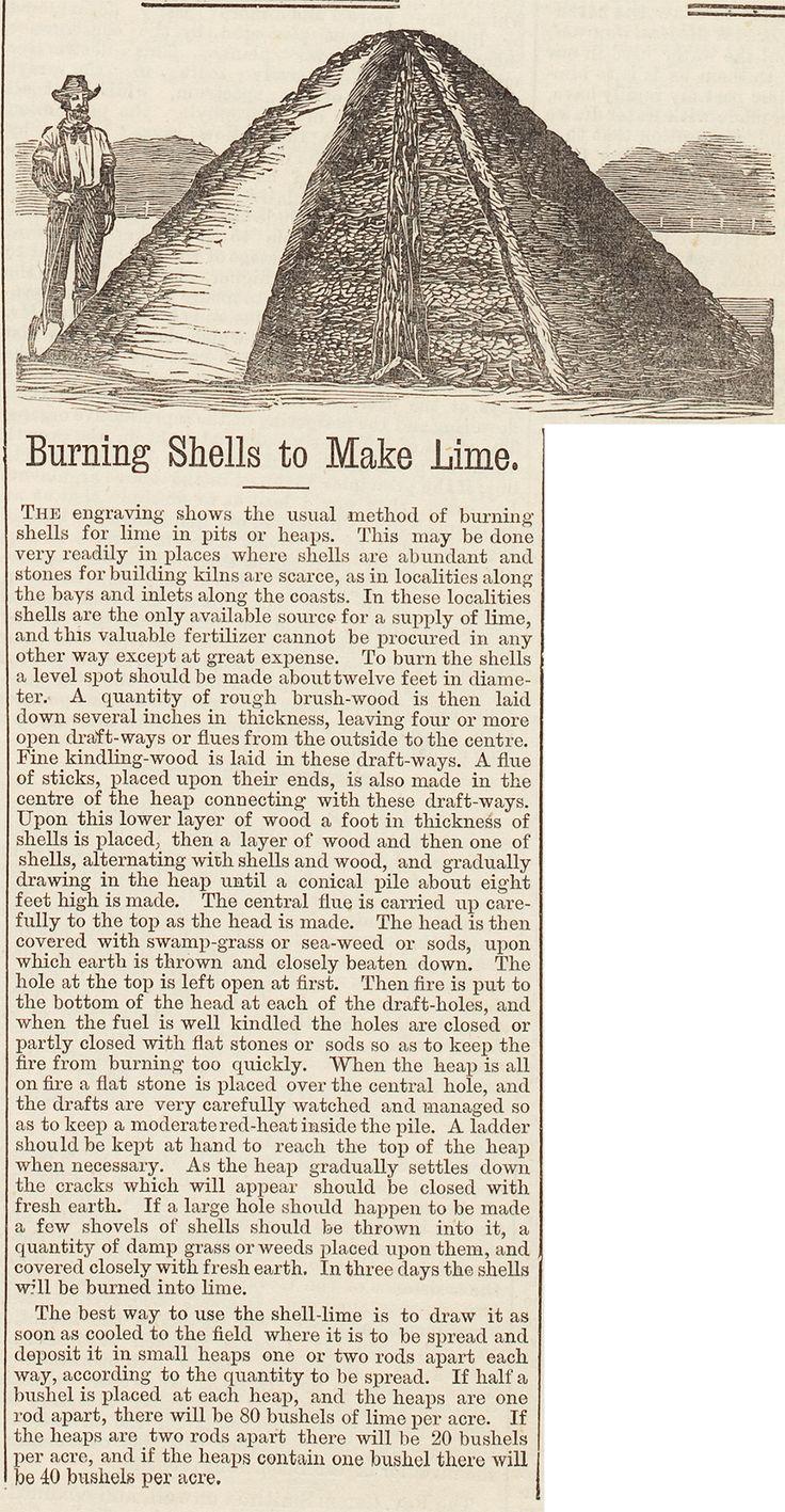 Burning Shells to Make Lime, 1874