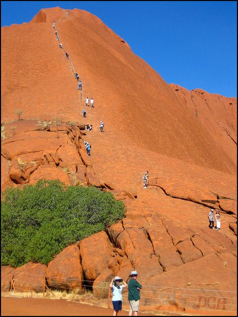 Uluru. I didn't acutally expect to see this many people climbing. 35 people have died doing this- at a height of 348 metres, it's no easy feat. Uluru-Kata Tjuta National Park. Northern Territory, Australia.