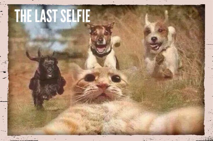 Last Selfie before I die!