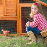 There is nothing quite like a delicious breakfast of bacon and eggs. This is especially true if the eggs are free range and the bacon does not contain any harmful additives or hormones. If you are privileged enough to own a small acreage then you should...