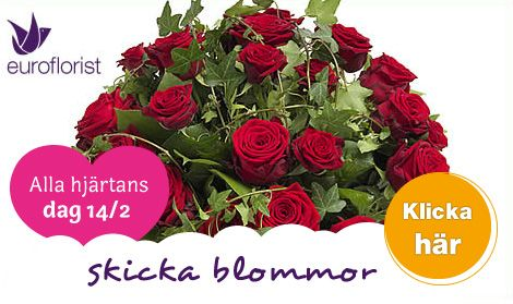 Vackra Alla hjärtans dag blommor med leverans direkt till mottagaren  Läs mer: Skicka Alla hjärtans dag blommor. Vi har leverans i hela landet 14/2 - Gula Sidorna på  http://niaz.se/alla-hjartans-dag-blommor