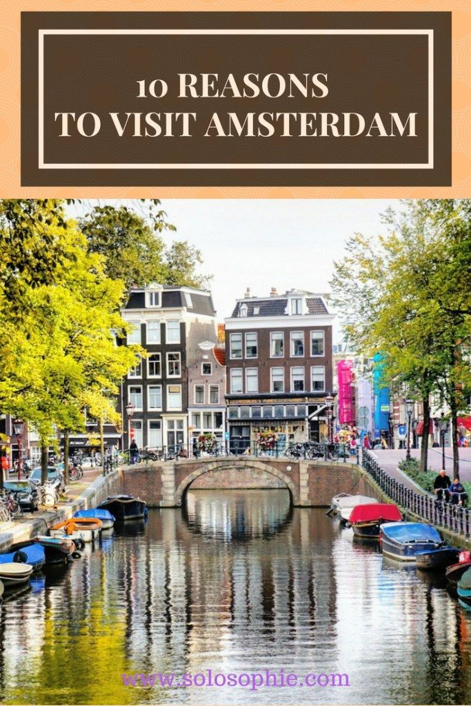 10 REASONS TO VISIT AMSTERDAM | solosophie