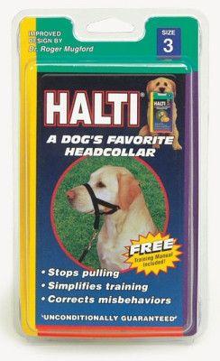 DOG TRAINING EQUIPMENT - WALK 'N TRAIN HEAD HALTER (HOLT) - SIZE 3 BLACK - COASTAL PET PRODUCTS, INC. - UPC: 76484513015 - DEPT: DOG PRODUCTS