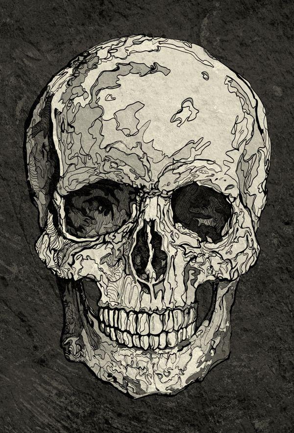 Skull by Tota Milow, via Behance