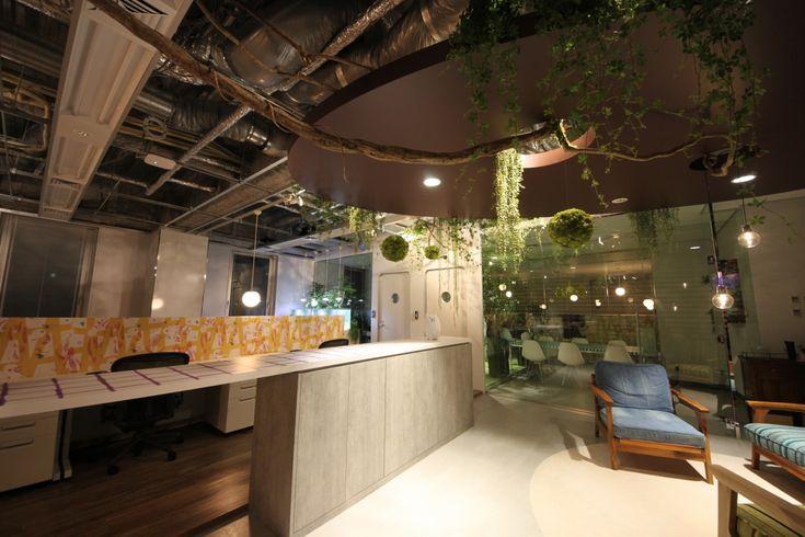自然と共に。酸素濃度の高いオフィス空間|オフィスデザイン事例|デザイナーズオフィスのヴィス