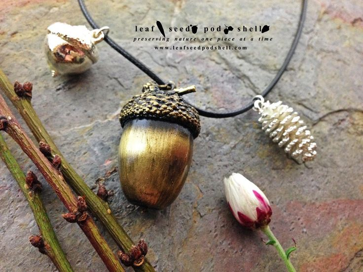 This beautiful acorn is preserved in a stunning antique brass finish.  Nestled within is a real acorn. The necklace also features two smaller companions, a tiny pine cone in bright silver and a tiny acorn in bright silver.