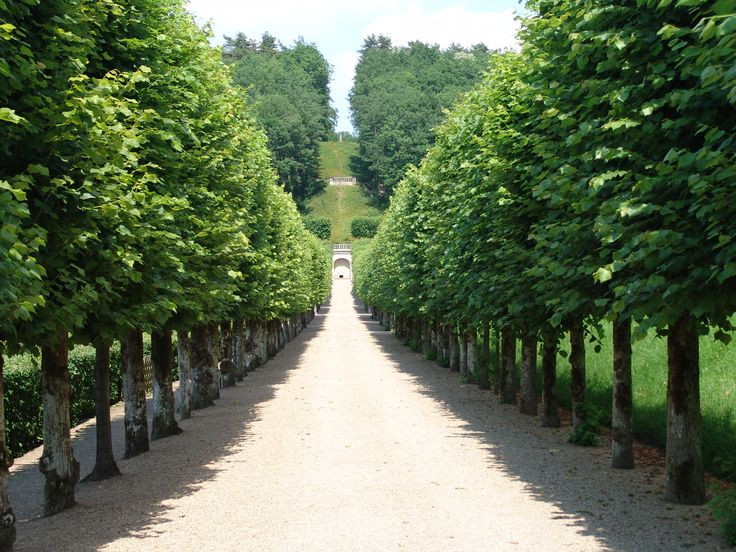 25 best ideas about French formal garden on Pinterest