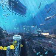 3Deek - pixelpusher, 3D Design en tevens ontwerper van de print in de lift van De TelefoonCentrale met de prachtige onderwaterwereld