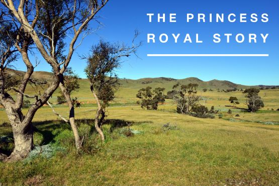 Discover our story at Princess Royal, history, burra, south australia, farming, cattle, princess royal, country life, we love the country