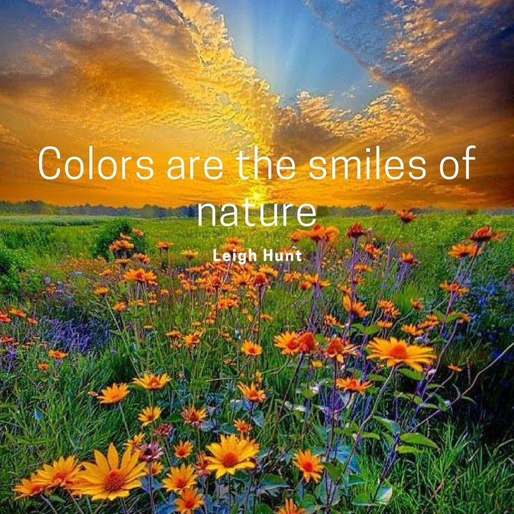 If colors are the smiles of nature, I'm so glad she smiles a lot giving more colorful meaning to life.  #colors #nature #life #wellbeing #bodylove #helenepouwels