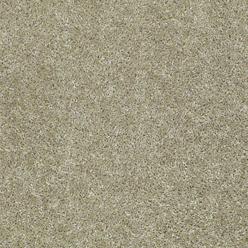 Shaw Collinsville Taupe Stone Builder Level 2 Carpet