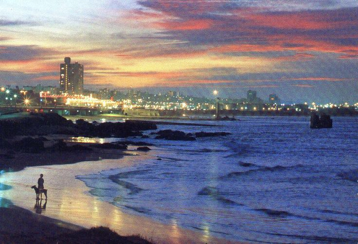 Port Elizabeth, SA.... take me back!