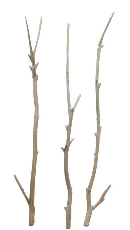 流木(大枝・太枝)の3本セット [f150]: