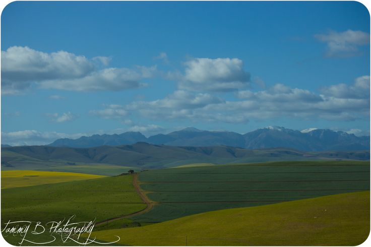 Snow capped mountains, Garden Route, Southern Africa.