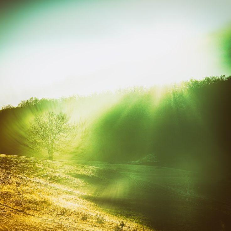 Winter morning - Digital manipulatin of previous photo.