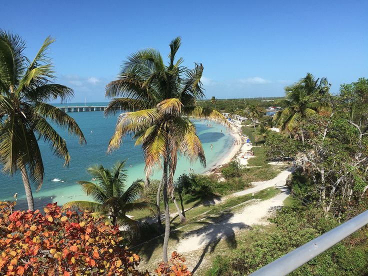 Florida is the most southeast state in the US, bordered on the east by the Atlantic and on the west by the Gulf of Mexico. As such, it boasts hundreds of miles of sandy beaches, wildlife preserves, and sunny, lively cities that are rich in Latin American and Caribbean cultures. While many people vis