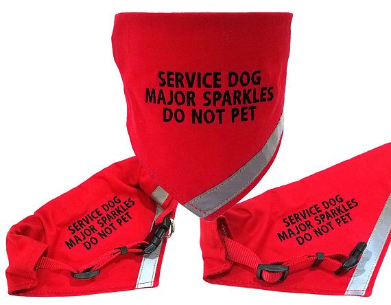 For a limited time we will be selling these at 9.99. We think these will be a hugely popular item. Get them before the price goes up. Want to make your puppy stand out. What better way then a bandana with his name on it. With the reflective strip it makes your pet safer as well. These