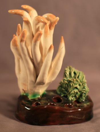 Clavaria Vermicularis Lorenzens Pottery Mushroom