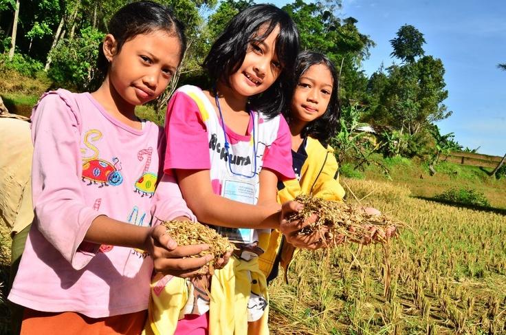 Outcamp Sekolah Alam Cikeas Purwakarta Indonesia