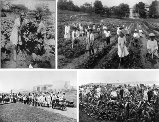 Μαθητές-γεωργοί στους σχολικούς κήπους σχολείων των ΗΠΑ.
