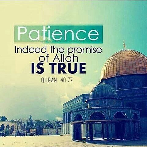 Patience, indeed the promise of Allah is true.