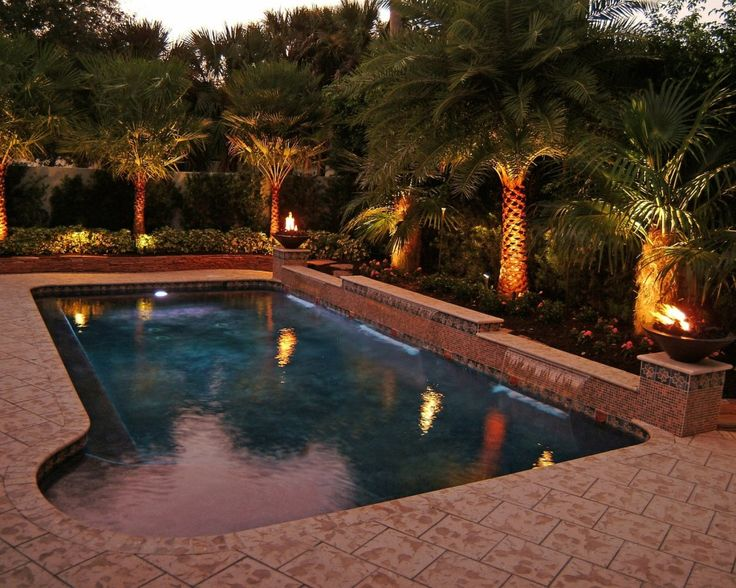 9 Best Images About Palms On Pinterest Trees Fire Pits And Pool Houses