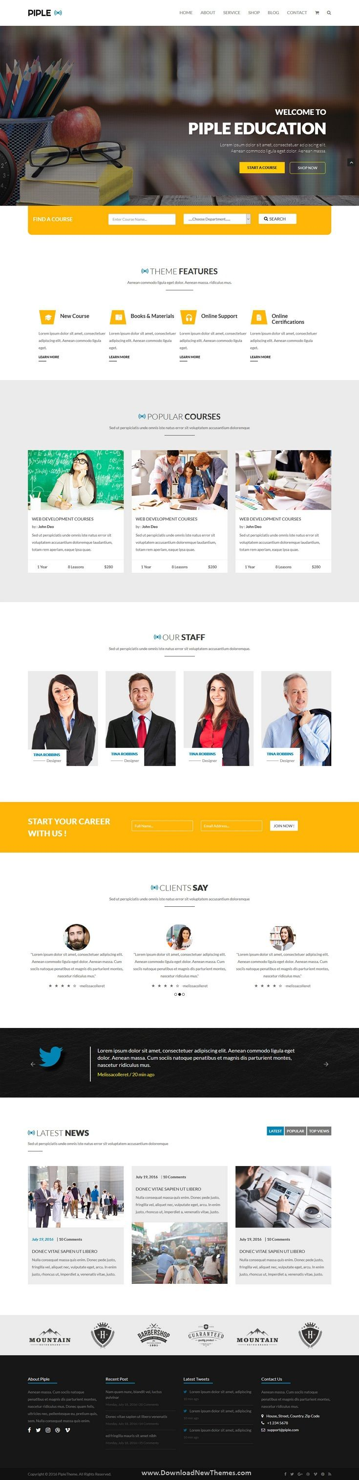 Piple 50+ Responsive Bootstrap 4 Theme in 2020 Page