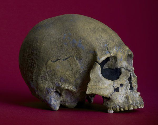 The Kennewick Man Finally Freed to Share His Secrets | History | Smithsonian