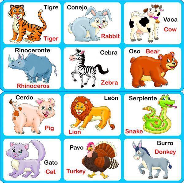 Manera Perfecta De Aprender Ingles Animales En Ingles Ingles Para Preescolar Ingles Basico Para Ninos