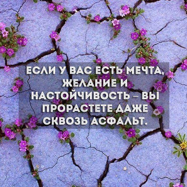Любовь Кулаева