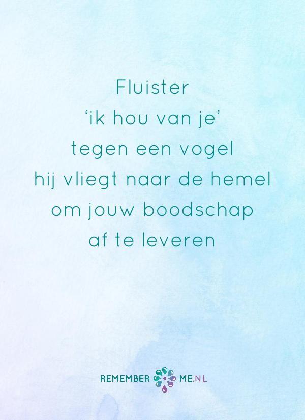 Vlieg maar mee. Een quote over het afscheid, het verdriet en het gemis na de dood van een geliefde. Vind meer inspiratie over de uitvaart en rouwen op http://www.rememberme.nl