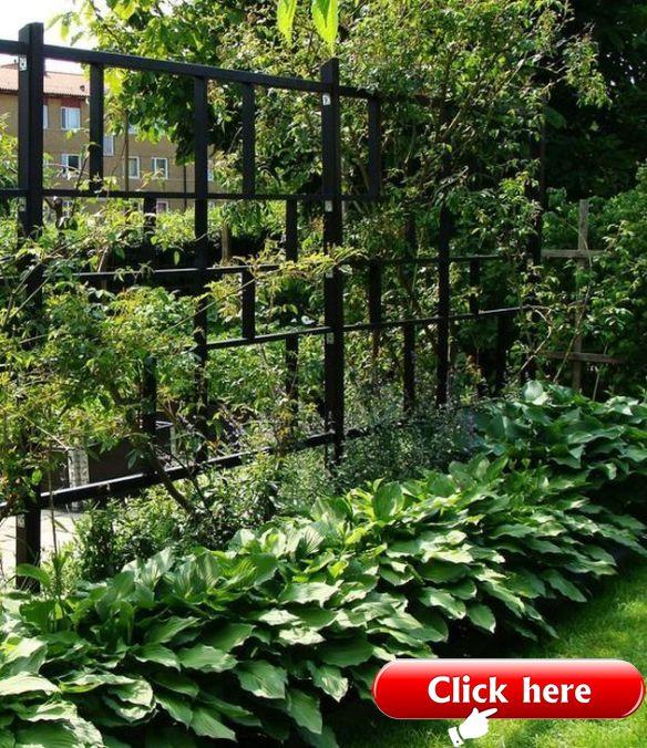 Moderner Gitter Entwurf Fur Schonen Garten Sichtschutz Moderne Gartenentwurfe Moderner Garten Garten