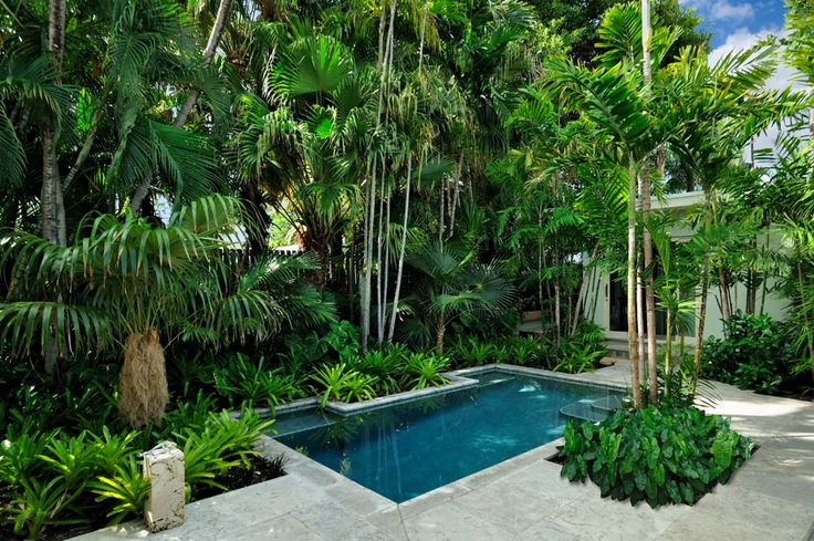 51 best tropical landscaping ideas images on pinterest for Tropical pool gardens