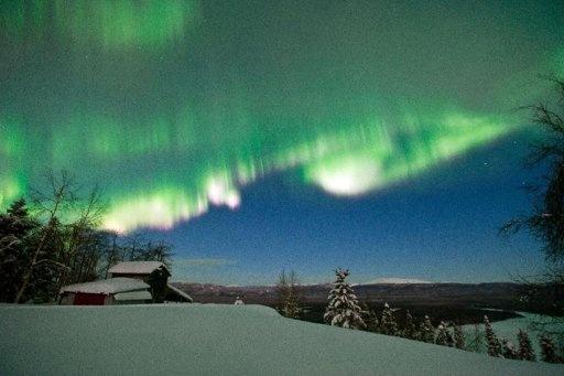 Anchorage: Sled Dogs, Buckets Lists, Trav'Lin Lights, Northern Lights Alaska, Aurora Borealis, Lights Show, Bumper Stickers, Photo, Finish Line