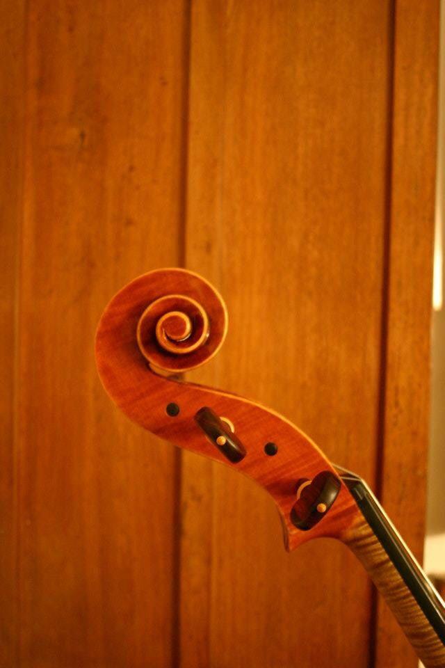 Scroll,salyangoz,cello