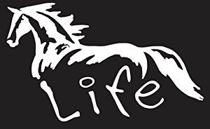 """Amazon.com: Horse Life 6"""" White VINYL Car Decal Art Wall Sticker USA horse shoe Country: Home & Kitchen"""