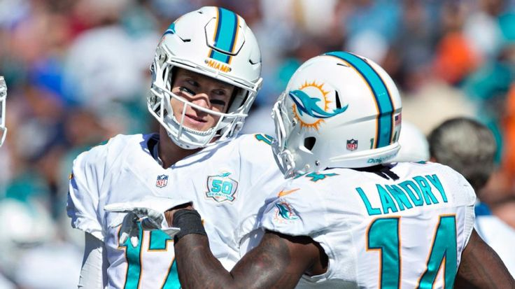 Can Dolphins coach Dan Campbell match wits with Bill Belichick? - Miami Dolphins Blog - ESPN
