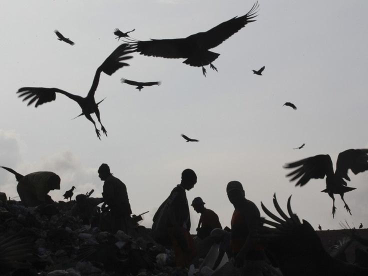 Grootste vuilnisbelt van Latijns-Amerika is nu opgeruimd. Jardim Gramacho in Rio de Janeiro was de grootste vuilnisbelt van Latijns-Amerika, ongeveer 1.400 mensen leefden van wat ze konden vinden op de afvalberg.